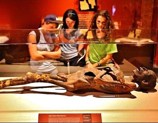 [:en]Egypt-mummy-Thutmose-Tomb-museum-Thutmose-1-mummy-fotor-thumbnail[:]