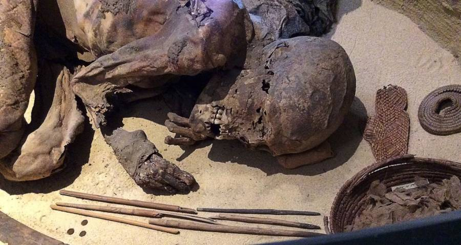 Ancient Egypt: 5,600-Year-Old Mummy Reveals Oldest Embalming Recipe