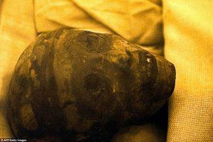 King Tut Nefertiti Mummy