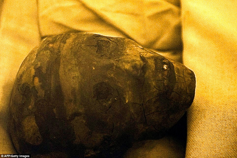 Could This be The Lost Mummy of Queen Nefertiti?