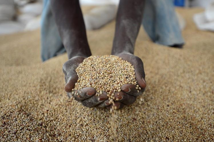African farmer Beer